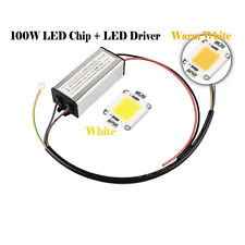 100W High Power White LED Lamp Light COB SMD Bulb Chips DIY + LED Driver Supply