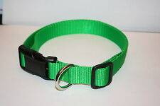 Lime Green Nylon Adjustable Dog Collars & Martingales & Leashes
