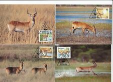 D93953 Red Lechwe WWF Complete Set of 4 Maxicards Botswana