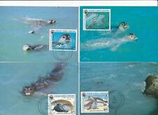 D93975 Monk Seal WWF Complete Set of 4 Maxicards Mauritania