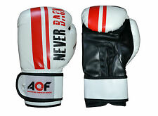 AQF Rex Leather Boxing Gloves Fight Punch Bag MMA Muay Thai Training Glove White