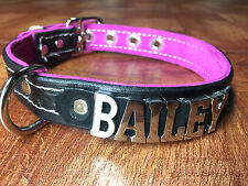 """Leather Dog collar 1"""" wide  completely customize any name/word choose colors!"""