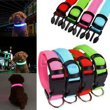 LED Dog Night Safety Pet Flashing Light Adjustable  Nylon Collar Leash TR