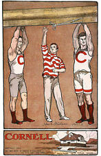 CORNELL ROWING TEAM VINTAGE 1902 POSTER  18x24