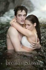 New Honeymoon Perfection Twilight: Breaking Dawn Poster