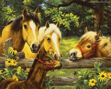 """Pasture Horses 16X20"""" Paint By Number DIY Acrylic kit Oil Painting Canvas 1969"""