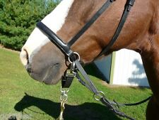 LUNGING/LUNGE STRAP for THE DR COOK BITLESS BRIDLE Converts the BB to Halter