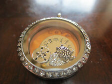 Customized Plate for Floating Lockets and Living Lockets