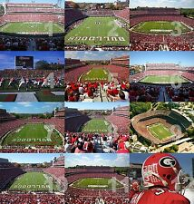 "Georgia Bulldogs Sanford Stadium NCAA College Football Photo 11""x14"" CHOICES"