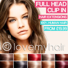 Clip in Hair Extensions 100% Human Hair Full Head