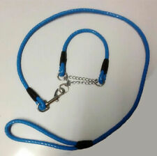 Pet Puppy Dog Leash Training Slip Lead Harness Tens Sizes and Colors for Choice