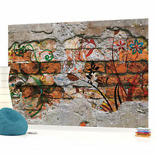 Graffiti Wall Texture Photo Wallpaper Wall Mural (CN-564VE)