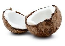 Coconut Cream Fragrance Oil Candle Soap Making Supplies Lotions More Uncut