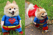 Superhero Halloween D