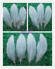 10-100pcs wholesale chicken feather beautiful natural silver 2-10 inches /5-25cm