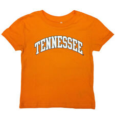 Tennessee Volunteers Youth Arched Tennessee T-shirt - TN Orange