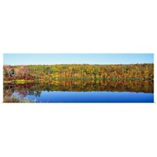 Poster Print Wall Art entitled Reflection of trees in water, Lake Hamilton,