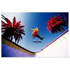 Poster Print Wall Art entitled Skateboarder in mid-air