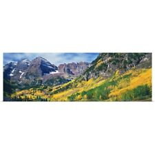 Poster Print Wall Art entitled Aspen trees in autumn with Maroon Bells, Elk