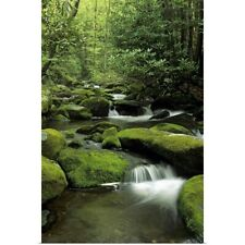Poster Print Wall Art entitled Mountain stream, Great Smoky Mountains National