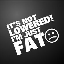 IT'S NOT LOWERED I'M JUST FAT Funny Car Window Wall Bumper Vinyl Decal Sticker
