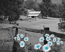 Small Farm-Blue Home Decor Picture Wall Art Floral Flower