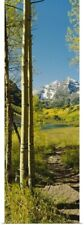 Poster Print Wall Art entitled Trees in a forest, Maroon Bells, Colorado