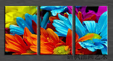 Oil Painting HD Print Wall Decor Art on Canvas,colorful Flowers (Unframed) 3PCS