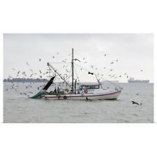 Poster Print Wall Art entitled Sea birds surrounding commercial fishing boat as