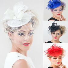Bridal Veil Pillbox Fascinator Clip Hairband Wedding Party Races Kentucky Derby