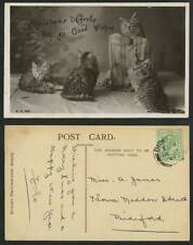 Cats Kittens, Christmas Carols with All Good Wishes 1907 Old Real Photo Postcard