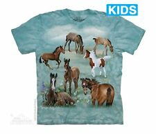**NEW DESIGN** Field Of Dreams Child's Mountain T-Shirt - Child's S-XL