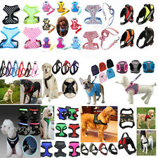 Pet Dog Harness Lead Leash with Clip Puppy Cat Soft Mesh Adjustable Padded Vest