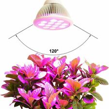 12/24W/36W LED Grow Light Bulb High Efficient Hydroponic Plant Lights for Garden