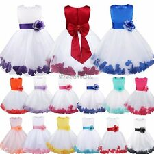Flower Girls Bridesmaid Dress Rose Petals kid Birthday Wedding Party Performance