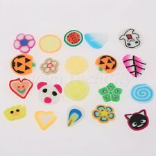 Professional Polymer Clay Nail Art Mix Flowers Feather Fruit Acrylic Nail Beauty