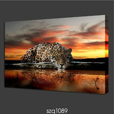 "Modern Home Decor Canvas Painting HD Print Picture Art animal Leopard ""20x32in"""