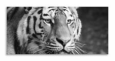 Tiger Face Canvas Black White Cat Abstract Panorama Wall Art Picture Home Decor