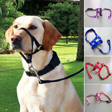 Pet Dog Head Collar Halter  Leash Leader No Pull Straps for Training Dogs 4Sizes
