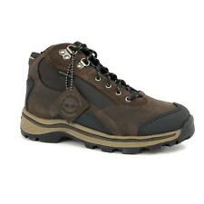 Timberland Youth Kids Lace Up Brown Waterproof Leather Hiking Boots 66732