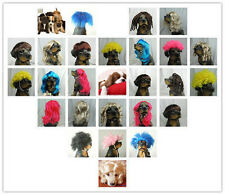 Pet wig/wigs supllier pet dog cats wig Adorable many style and colors