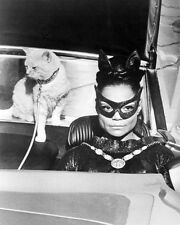 EARTHA KITT BATMAN DRIVING CAR WITH CAT BEHIND IN COSTUME MASK PHOTO OR POSTER
