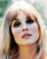SHARON TATE PHOTO OR POSTER