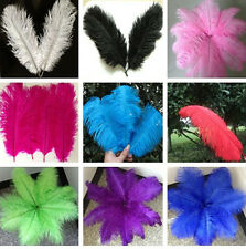 Free shipping 5-100pcs/6-16inch high quality natural ostrich feather Wedding hot