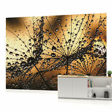 Gold Dandelions with Dew Photo Wallpaper Wall Mural (CN-1008P)