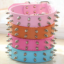 NEW 2 Row Spiked Studded Faux Leather Dog Collar Medium Large Pitbull Terrier