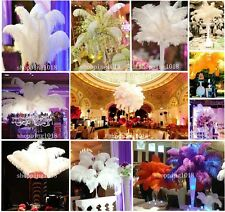 Natural OSTRICH FEATHERS High Quality Wholesale 10/50/100pcs 6-22'inch/15-55cm
