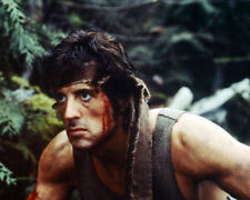 FIRST BLOOD SYLVESTER STALLONE IN FOREST RAMBO WITH MENACING LOOK PHOTO & POSTER