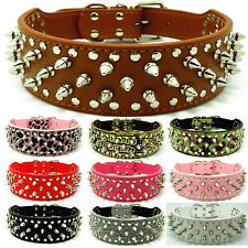 New Leather Dog Collar Spikes & Studs Collars Pit bull Dog Terrier Cathro Collar