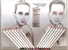 New All Natural Mineral Eyeliner and Lip Liner Pencil 14 Colors Available or set